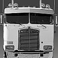 Catr3137-13 by Randy Harris