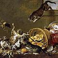 Cats Fighting In A Larder by Paul de Vos