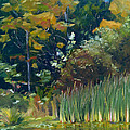 Cattails by Lisa Frick