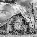 Cattaraugus County Barn 6160b by Guy Whiteley