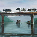Cattle Crossing by Petra Stephens