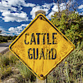 Cattle Guard Road Sign by Panoramic Images