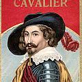 Cavalier by Studio Artist