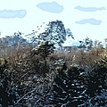 Cavehill In The Snow 2 by Patrick J Murphy