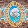 Cayo Hueso Habana Key West - Hdr Style by Ian Monk