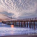 Cayucos Pier by Alice Cahill