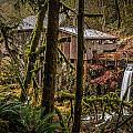 Cedar Creek Grist Mill 2 by Mike Penney
