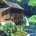 Cedar Creek Grist Mill by Cireena Katto