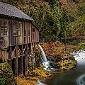Cedar Creek Grist Mill by Mike Penney