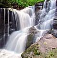 Cedar Rock Creek Falls by Carol Montoya