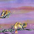 Bohemian Waxwings Birds by Melly Terpening