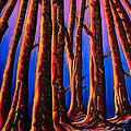 Cedars In Stanley Park by Jo-Anne Elniski
