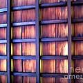 Ceiling At The Japanese House Philadelphia Usa by Ausra Huntington nee Paulauskaite