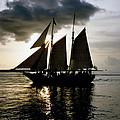 Celebrating Sunset Photograph by Kimberly Walker