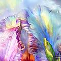 Celestial Goddesses by Carol Cavalaris
