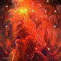 Celestial Poppies - Red by Carol Cavalaris