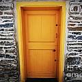 Cellar Door by Patrick Rodio