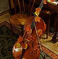 Cello Autumn 1 by Mick Anderson