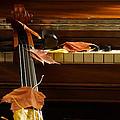 Cello Autumn 2 by Mick Anderson