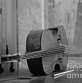Cello by Riccardo Mottola