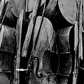 Cellos 6 Black And White by Rob Hans