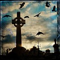 Celtic Blue by Gothicrow Images