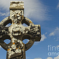 Celtic Cross, Cong Abbey, Ireland by John Shaw