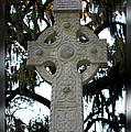 Celtic Cross In Savannah by Carol Groenen