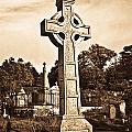 Celtic Cross In Sepia 1 by Douglas Barnett