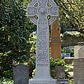 Celtic Cross Of Charleston  by Suzanne Gaff