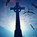 Celtic Cross With Swarm Of Bats by Johan Swanepoel