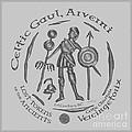 Celtic Vercingetorix Coin by Kristen Fox