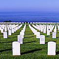 Cemetery At Waterfront, Fort Rosecrans by Panoramic Images