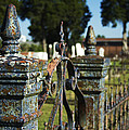 Cemetery Gate With Peeling Paint by Kathy Clark