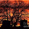 Cemetery Sunset by Deanna Cagle