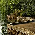 Centennial Park by Diana Powell