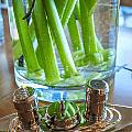 Centerpiece 3 by Mike Penney