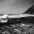Central Oregon Coast Bw by Earl Johnson