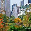 Central Park And Fifth Autumn View by Regina Geoghan