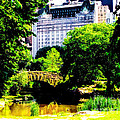 Central Park At 59th Street by Anne Ferguson