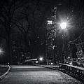 Central Park At Night by Steven Mieses