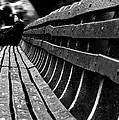 Central Park Bench by Sara Trilla