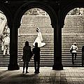 Central Park Bride by Madeline Ellis