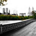 Central Park Bridge 2 by Mike Nellums