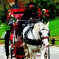 Central Park Carriage by Alice Gipson