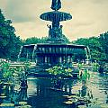 Central Park Fountain by Amel Dizdarevic
