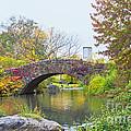 Central Park Gapstow Bridge Autumn II by Regina Geoghan