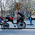 Central Park Horse Carriage Station Panorama by Thomas Marchessault