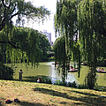 Central Park In The Summer by Christy Gendalia