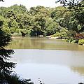 Central Park Lake by John Telfer